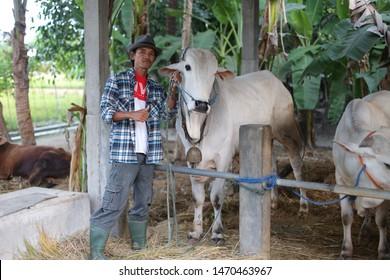 veterinarian cow asian man holding head. yogyakata indonesia. august 5, 2019.