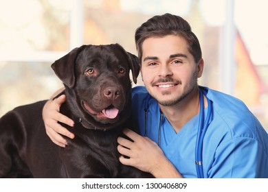 Veterinarian doc with dog in animal clinic