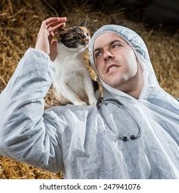 Veterinarian examines cat.