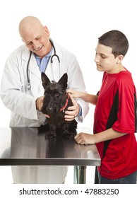 Veterinarian examines a Scotty dog while his young owner looks on.  Isolated on white.