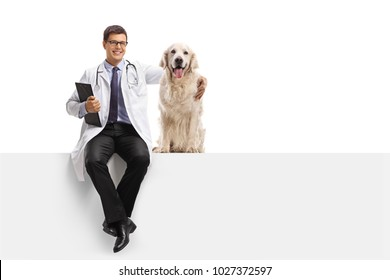 Veterinarian with a labrador retriever dog sitting on a panel isolated on white background