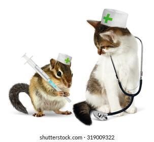 Veterinary concept, funny chipmunk  and cat with phonendoscope and syringe on white