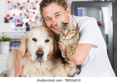 Veterinary consultation with his Golden Retriever dog and cat