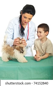 Veterinary examine puppy mouth and the child looking with happy face