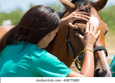 Veterinary horses on the farm conducting a review in one eye