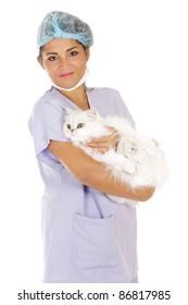 veterinary woman holding angora cat isolated on white