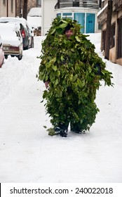 VEVCANI, MACEDONIA - JANUARY 13, 2012: A man dressed up as a tree during the Vevcani Carnival, southwestern Macedonia