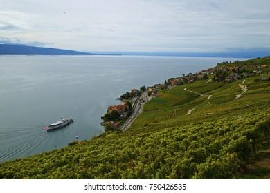 Vevey Lavaux Switzerland