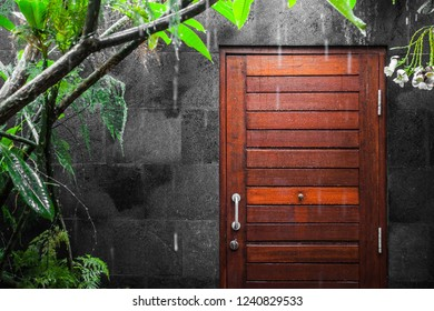 Vew at wooden door onto heavy tropical rain