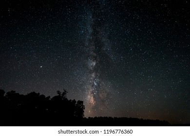 Via Lactea over a pine forest. Granadilla. Extremadura. Spain.