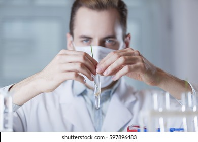 the vial with the plant in front of the face of the scientist