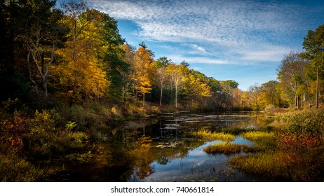 Vibrant and colorful fall foliage being reflected in a small pond on a sunny autumn afternoon