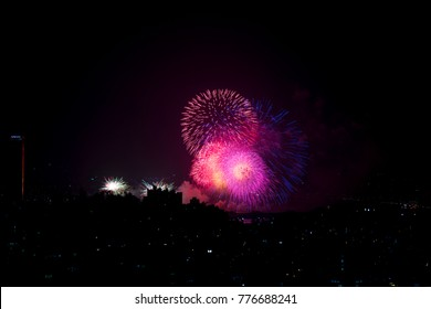 Vibrant colorful firework at night