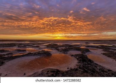Vibrant Colors of Salt Marshlands in San Francisco South Bay. Alviso Marina County Park, Santa Clara County, California, USA.