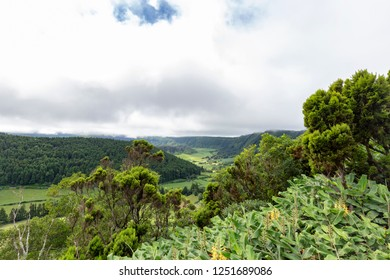 Vibrant greens in the massive Cete Cidades crater on Sao Miguel.