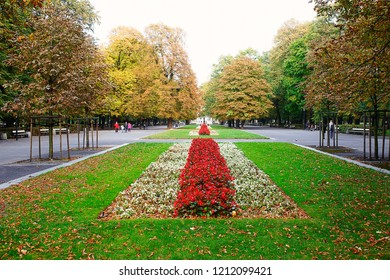 Vibrant natural autumn colours in the state park in Warsaw