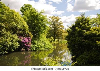 Vibrant pond in Kelvingrove Park, Glasgow, Scotland