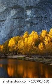 Vibrant sunlit golden trees reflected in water below rockface