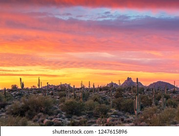 Vibrant sunrise near Pinnacle Peak mountain in North Scottsdale Arizona with cactus in foreground.