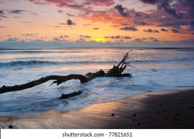 Vibrant sunset at Dominical Costa Rica with Driftwood floating in surf