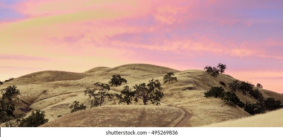 Vibrant Sunset of Rolling Hills during a long drought. Joseph D Grant County Park, Santa Clara County, California, USA.