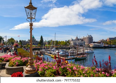 VICTORIA, BC CANADA - AUG 23 2017:   The inner city of Victoria in full summer glow.