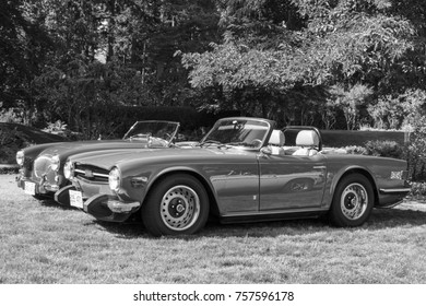 Victoria BC  Canada Sept 10 2017 :   Vintage Triumph motorcars are on display at the English Car Affair in the Park.  Theses masterpieces are fully restored for the line up.