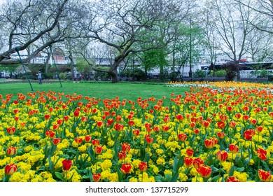 Victoria public gardens in London