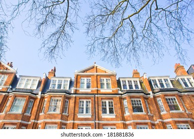 Victorian architecture in London with blue sky and tree branches