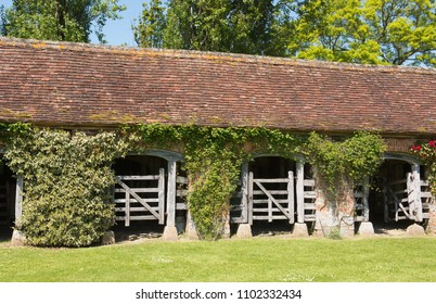 Victorian Stable Block Covered with Rambling Roses on a Farm in Rural Somerset, England, UK