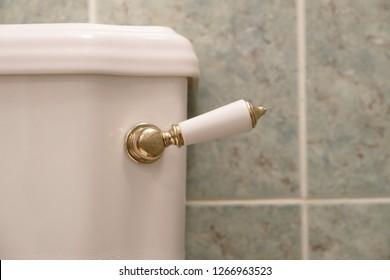 Victorian toilet pan lever flush close up detail gold