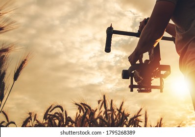 Videography and Cinema Industry Theme. Scenic Sunset Cinema Shot Using Digital SLR Camera and Gimbal Stabilizator. Operator Walking with Professional Equipment Between Rye Field.