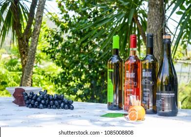 Viena Do Castelo / Portugal - 22nd of June 2018. Vinho verde vine degustation in Portugal.