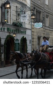 VIENNA, AUSTRIA - AUGUST 29, 2018: Horse-drawn carriage tour in the streets of Vienna