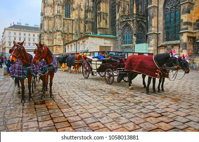 Vienna, Austria - January 8, 2014: Team of horses and their coach at St Stephen Cathedral and Stephansplatz in Vienna, Austria. People on the background
