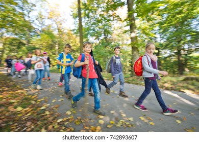 VIENNA, AUSTRIA - OCTOBER, 2017: School class on a field trip on a sunny autumn day in the forest of Vienna Woods. Children enjoying the outdoors.