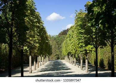 Vienna, Austria - September 10 2013: Summer park in Shonbrunn, Vienna