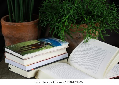 VIERSEN, GERMANY - MARCH 11. 2019: View on open book and stack of books on antique round wood table with green plants