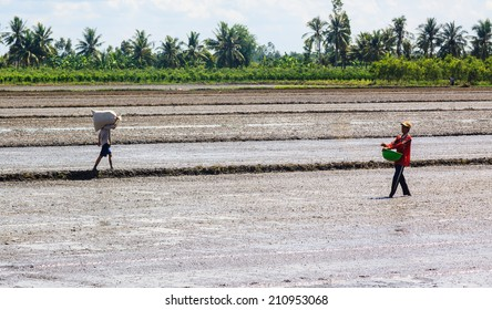 VIETNAM - APR 06: Unidentified farmers working on the rice field in Vietnam on April 06, 2013. In Vietnam, approximately 60 percent of the employed labor force was engaged in agriculture and forestry.
