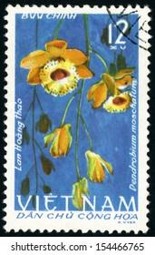 Dendrobium Moschatum Images, Stock Photos & Vectors