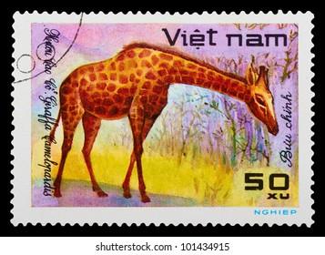 VIETNAM - CIRCA 1980: A stamp printed in VIETNAM shows a African animal, series, circa 1980