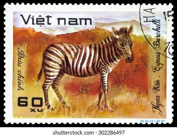 VIETNAM - CIRCA 1981: A stamp printed in Vietnam shows  Zebra,  circa 1981