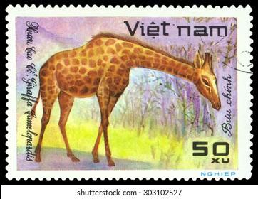 VIETNAM - CIRCA 1981: A stamp printed in Vietnam shows  ,  circa 1981