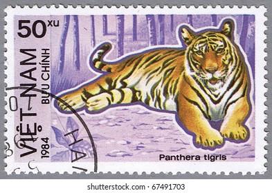 VIETNAM - CIRCA 1984: A stamp printed in Vietnam shows Panthera tigris or tiger, series is devoted to animals endangered, circa 1984