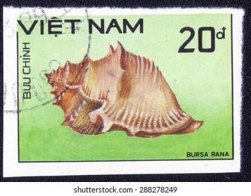 "VIETNAM - CIRCA 1986 : A stamp printed by Vietnam shows a series of images ""Rare seashells"" circa 1986."