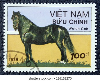 VIETNAM - CIRCA 1989: A stamp printed in the VIETNAM, shows horse, circa 1989