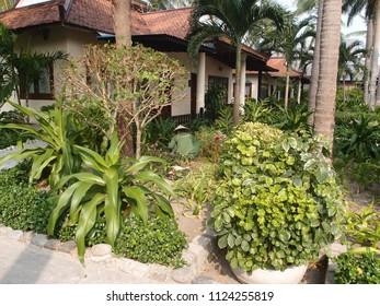 Vietnam, Nha Trang - march 29, 2018: The gardener works in the tropical garden, Nha Trang, Vietnam