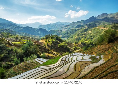 Vietnam Sapa Landscape