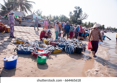 Vietnamese fish local market nets near by Mui Ne Beach, Phan Thiet District, Binh Thuan Province, Vietnam. Photo taken at: 21/ 04/ 2014.