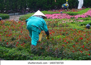 Vietnamese Flower gardeners take care the  Flowers in garden of Ba na hill Danang, Vietnam